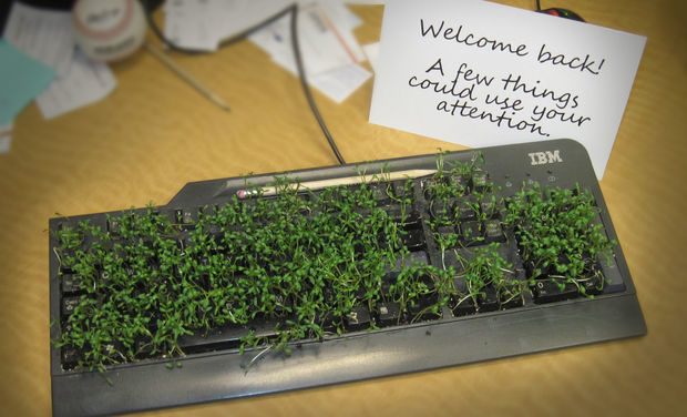 Keyboard plant prank